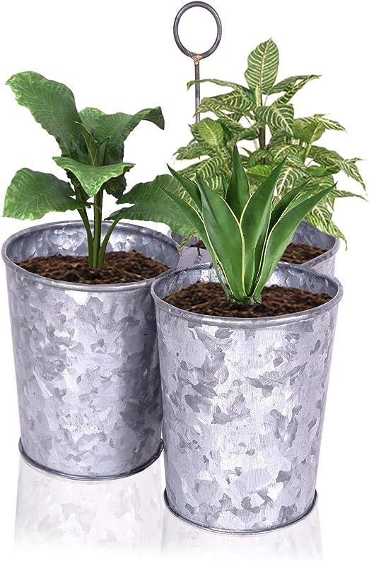 Macetas de jardín de metal galvanizado con bandeja, juego de 4 – Cubeta para macetas – 3 macetas de flores, bandeja x1 – Macetas de jardín interior/exterior: Amazon.es: Jardín