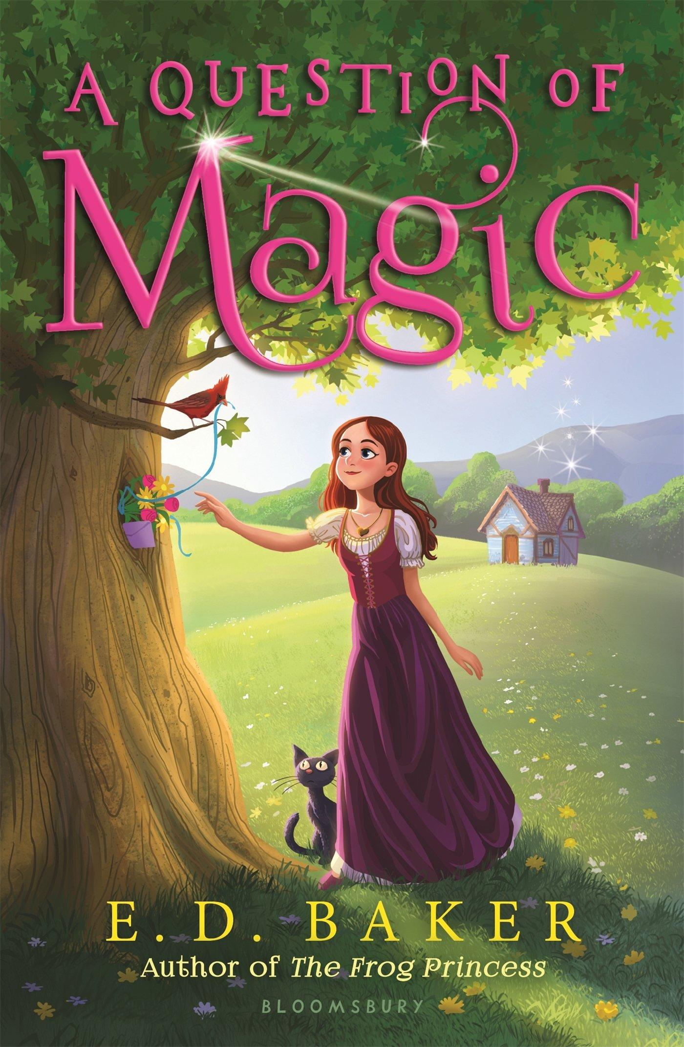 A Question of Magic pdf