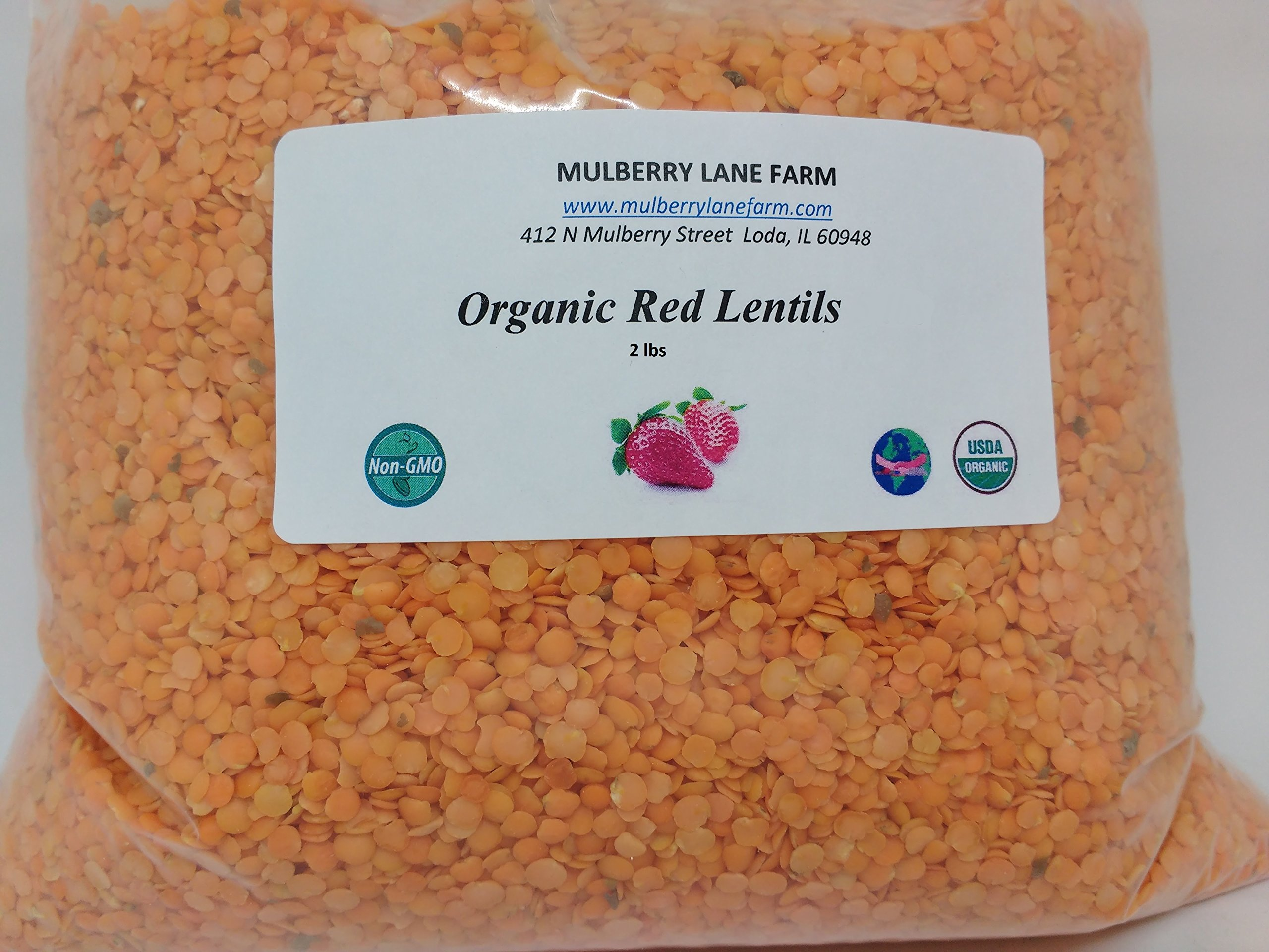 Red Lentils 2 lbs (Two Pounds) USDA Certified Organic, Non-GMO, BULK by Mulberry Lane Farms