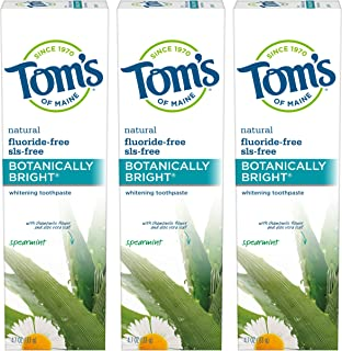product image for Tom's of Maine Natural Fluoride-Free SLS-Free Botanically Bright Toothpaste, Spearmint 4.7 Ounce, 2 Pack