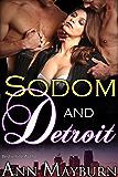 Sodom and Detroit (Virtual Seduction Book 1)