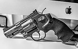 Gun looks pretty nice, very realistic