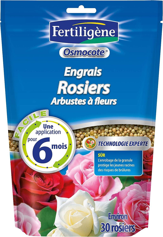 FERTILIGENE 8962 Osmocote – Abono para Rosales, 750 g: Amazon.es: Jardín