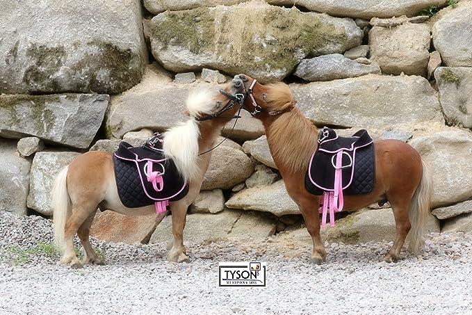 Sillín Juego Negro/Rosa incl accesorios Falabella Mini Pony Minis Hetty Mini Sillín Shetty 8 10 12 pulgadas Madera caballo Adecuado Super Fácil Tysons ...