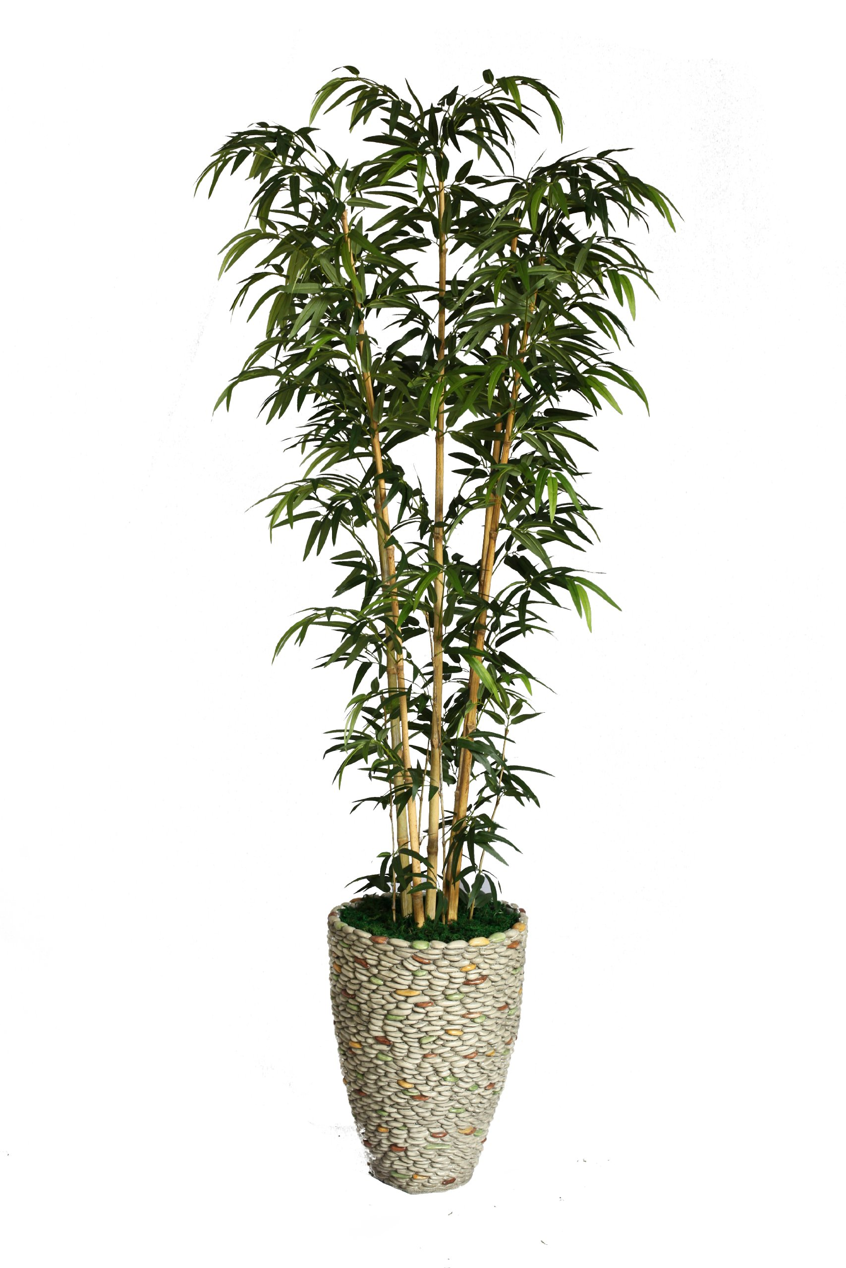 Laura Ashley VHX116209 86-Inch Natural Bamboo Tree in 16-Inch Fiber Stone Planter