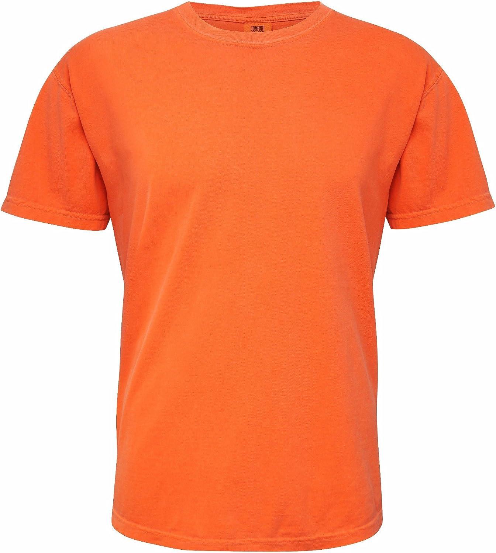 Comfort Colours Adults Unisex Short Sleeve T-Shirt (L) (Burnt Orange)