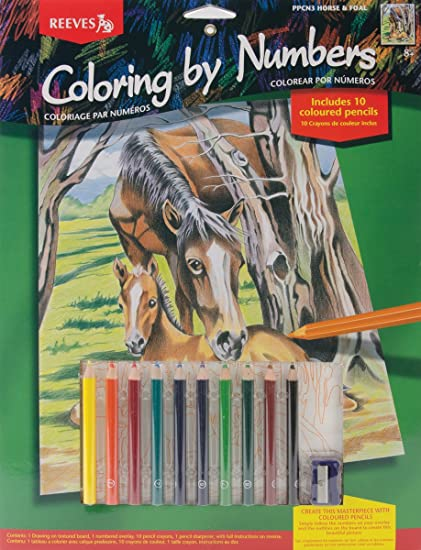 amazon com reeves color by number kit 9 x12 horse foal arts