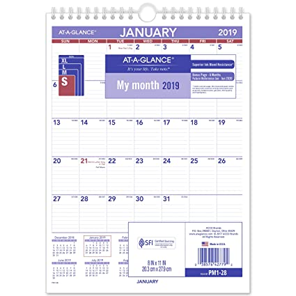 amazon com at a glance 2019 monthly wall calendar 8 x 11 small