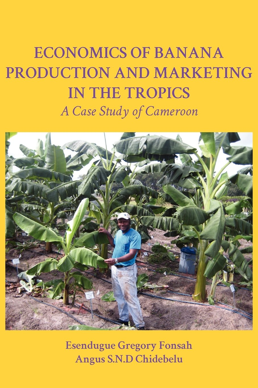 Economics of Banana Production and Marketing in the Tropics. A Case Study of Cameroon Paperback – December 15, 2011 Esendugue Gregory Fonsah Angus S.N.D Chidebelu Langaa RPCIG 9956726540