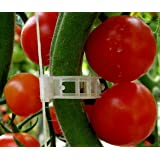 Plant Clips Support Tomatoes, Peppers, Vine Plants & Flowers to Grow Upright: 100 Plant Clips