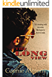 The Long View: A Contemporary Christian Romantic Suspense Thriller