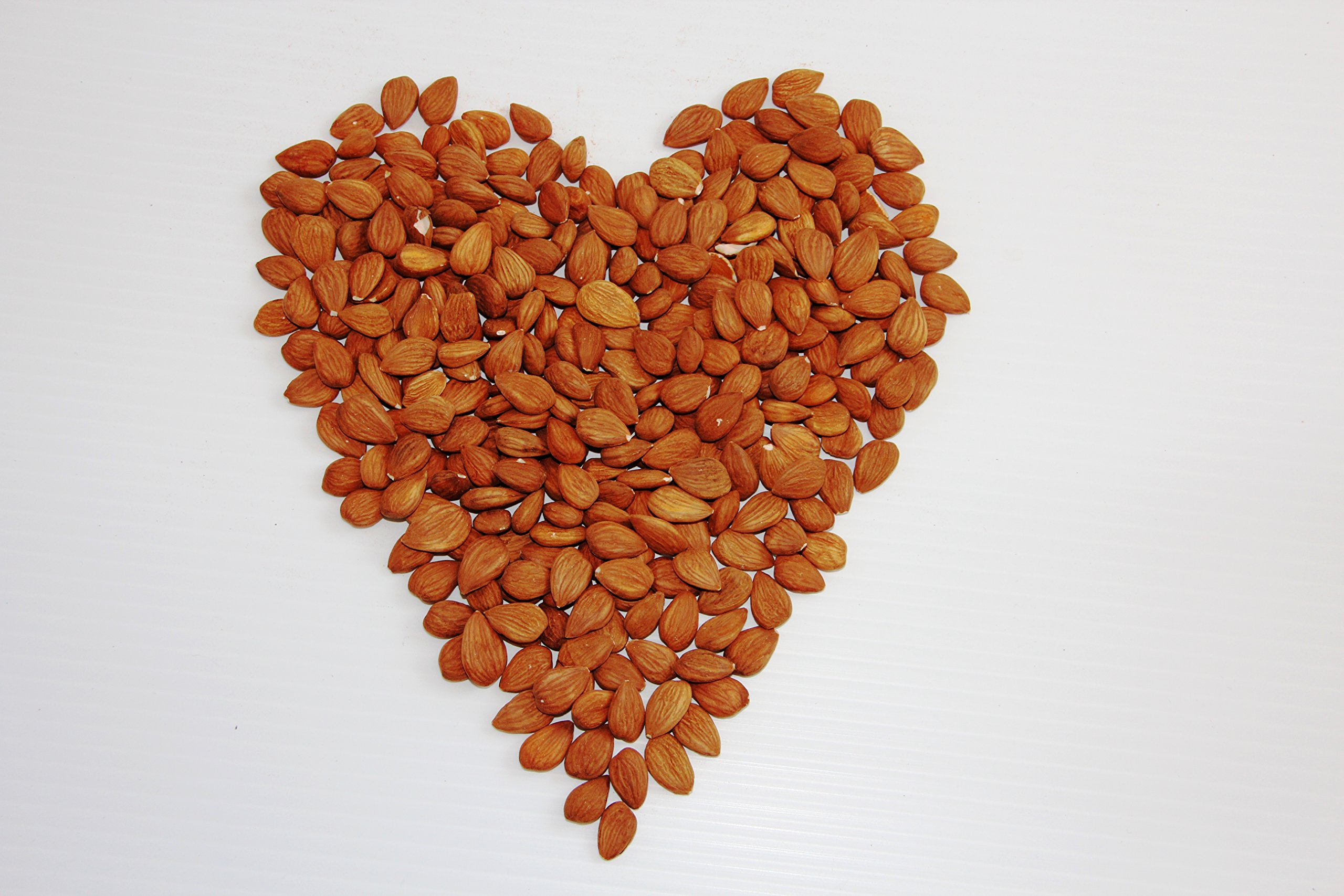 Our Father's Farm Extremely Bitter Certified Organic Raw Apricot Kernels (2 Pounds / 908 grams)