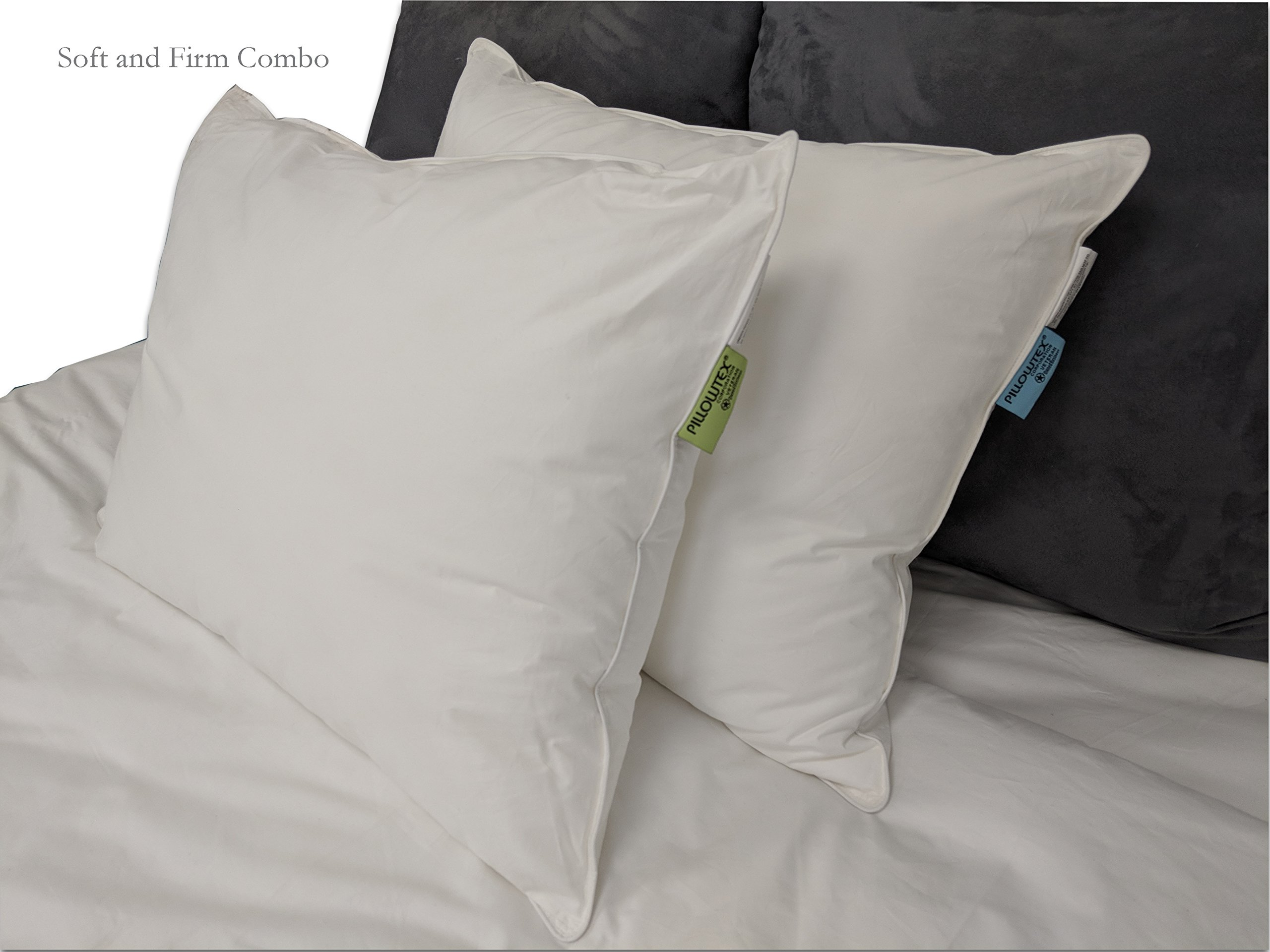 Pillows Similar to Choice Hotels (Standard (20''x26''), Soft) by Pillowtex (Image #2)