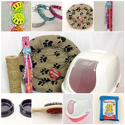 RS Pet Kits Kit de iniciación para gatos, con capucha, bandeja de arena para gatos con gato y cuello de gato con purpurina: Amazon.es: Productos para ...