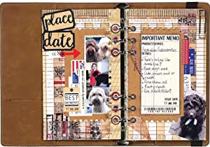 Elizabeth Craft Designs Elizabeth Craft Metal Die-Planner Essentials 11, Silver