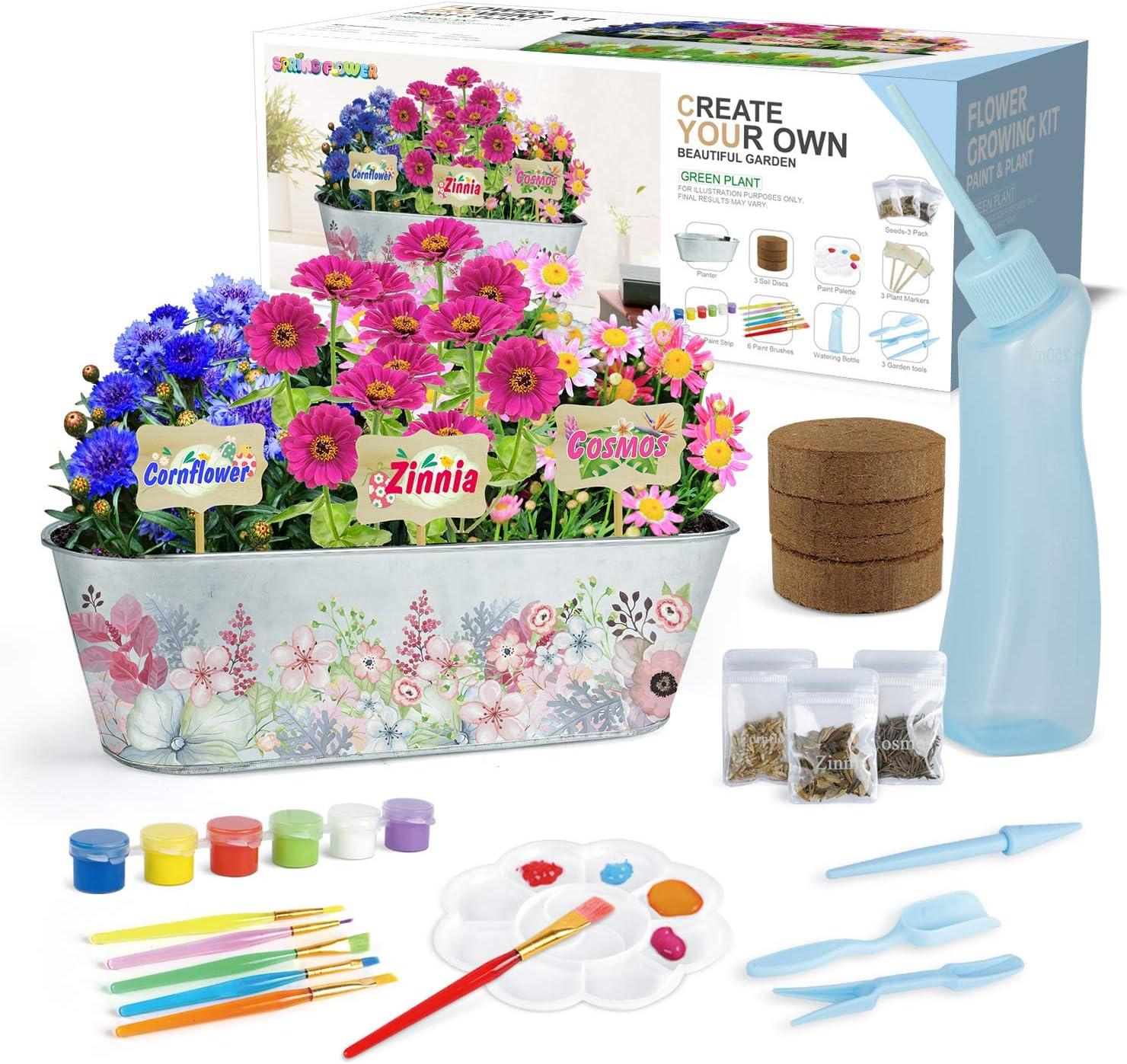 Paint /& Plant Flower Growing Kit