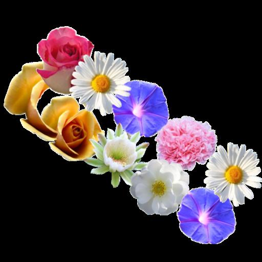Fun flowers puzzle