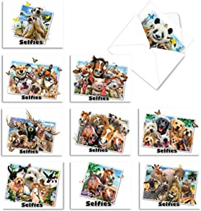 The Best Card Company - 10 Blank Animal Cards Boxed (4 x 5.12 Inch) - Assorted Pets, Zoo, Wildlife Cards for Kids - Note To Selfie M6642OCB
