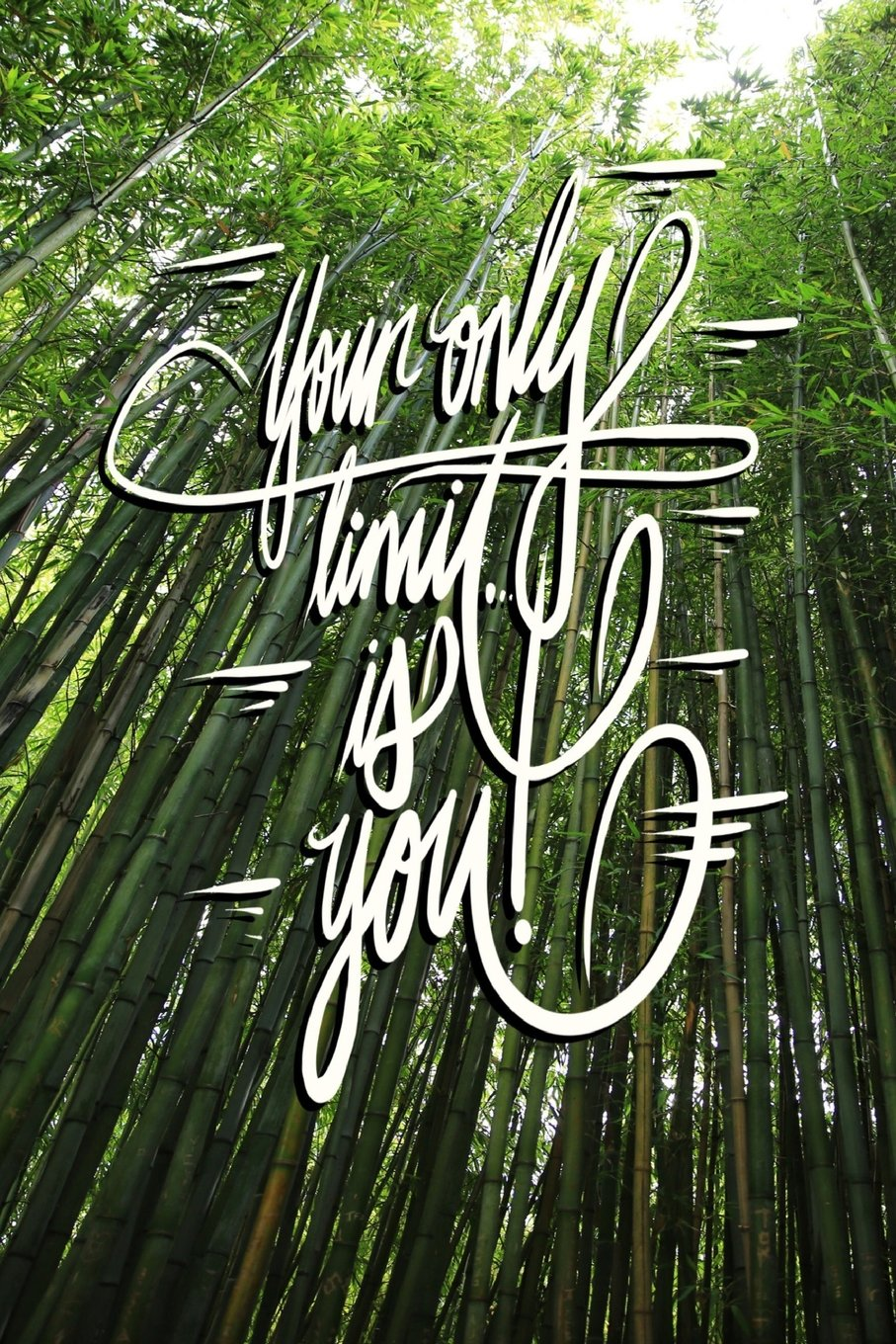 Read Online Your only limit is you: 6x9 Inch Lined breakthrough Success Journal/Notebook - Green, Bamboo forest, Tranquil, Japan, Calligraphy Art with photography pdf
