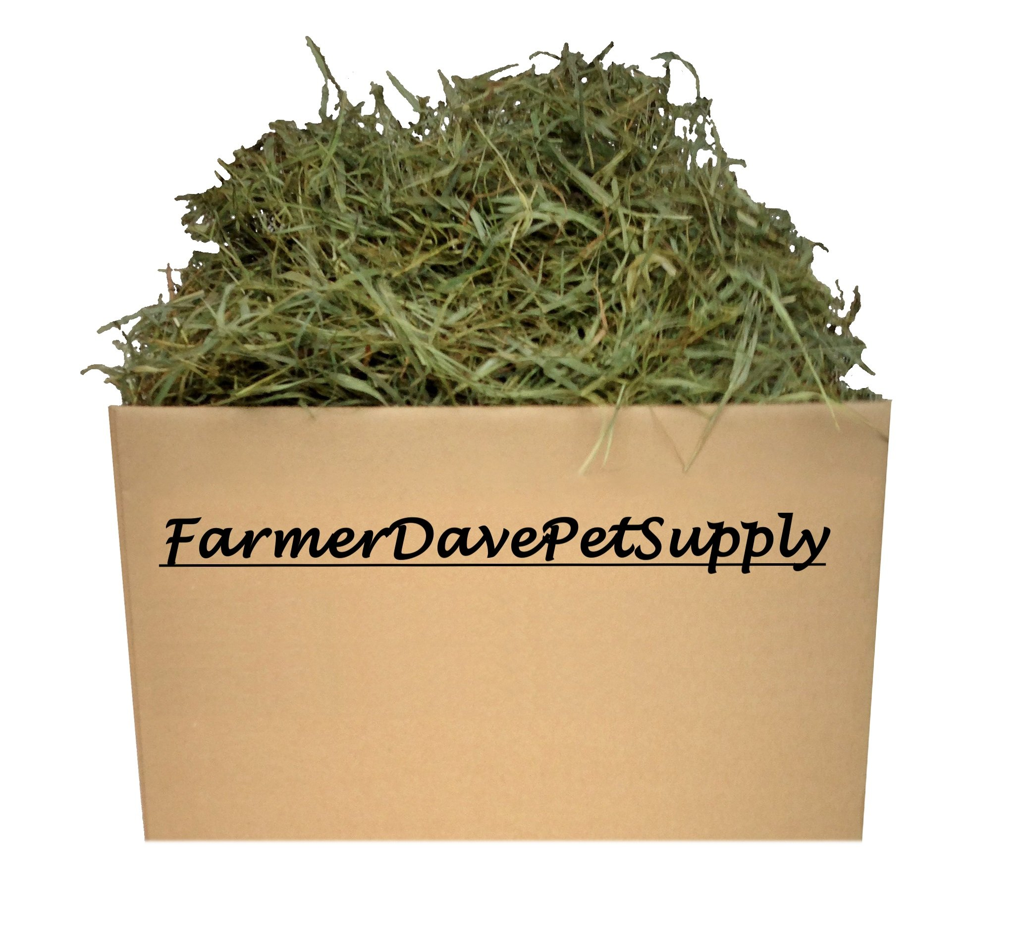 FarmerDavePetSupply 10 Lb Second Cut Timothy Hay, Bunny, Guinea Pig and Chinchilla Hay by FarmerDavePetSupply