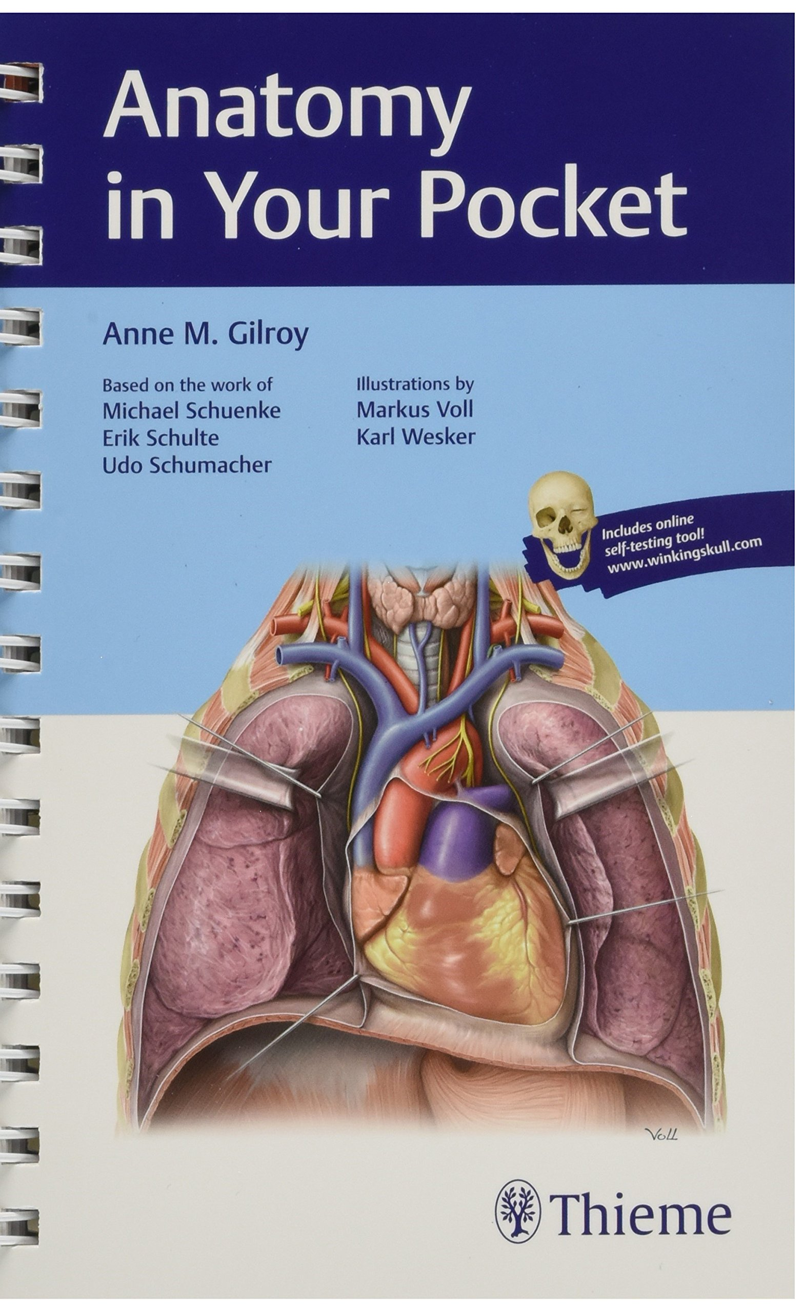 Buy Anatomy in Your Pocket Book Online at Low Prices in India ...