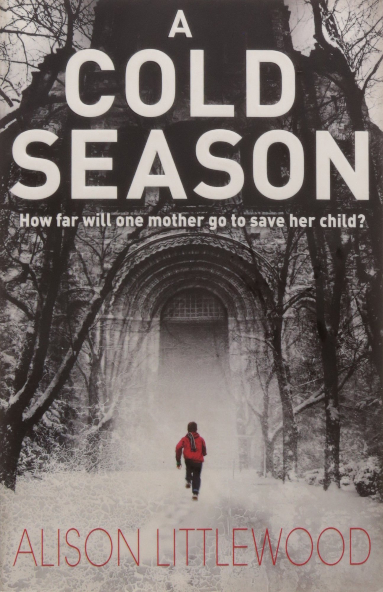 A Cold Season: The Chilling Richard And Judy Bestseller! (the Cold):  Amazon: Alison Littlewood: 9781780871363: Books