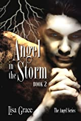 Angel in the Storm, Book 2 (The Angel Series) Kindle Edition