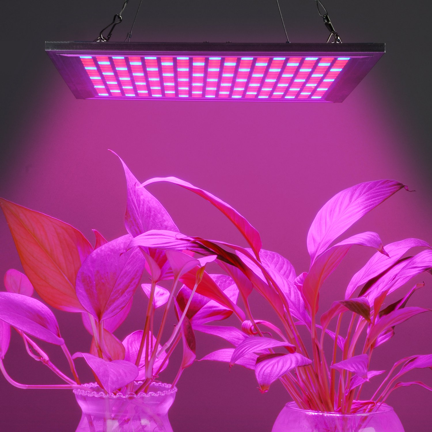 LED Grow Light for Indoor Plants Growing Lamp 150W 289 LEDs Dimmable Plant Lights Bulb Panel Hanging Kit for Seedling Hydroponics Greenhouse Veg and Flower by Hytekgro by Hytekgro (Image #5)