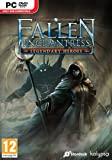 Fallen Enchantress: Legendary Heroes (PC DVD)