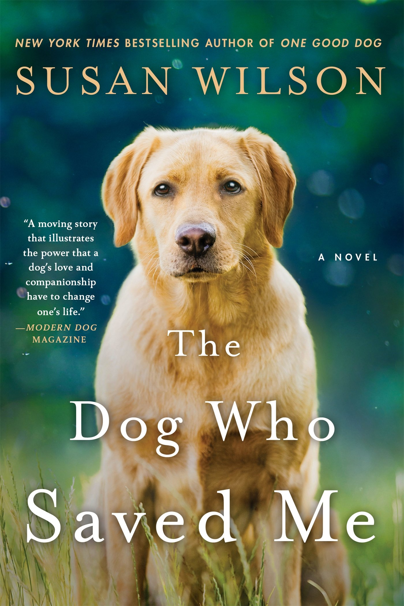 Dog Who Saved Me Novel product image