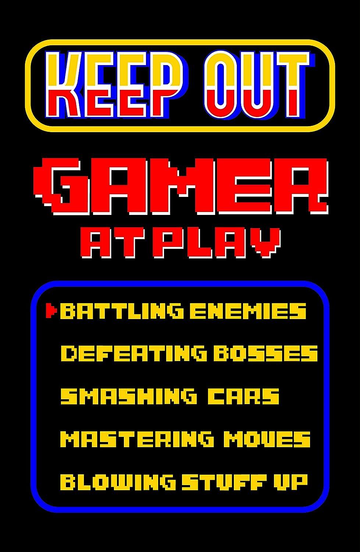 Damdekoli Gamer Poster - 11x17 Inches, Video Game