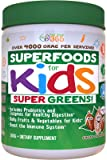 Organic Superfood Greens For Kids (60-Day): CoCoa Chocolate Flavor, Doctor-Formulated, Vitamins & Minerals, Gluten Free, Vegan, Whole Food Powder – Fruits & Veggies, Probiotics, Digestive Enzymes