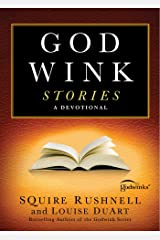 Godwink Stories: A Devotional (The Godwink Series) Paperback
