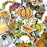 Cute Pumpkin Stickers and Autumn Stickers for Scrapbooking and Halloween Giveaways (25 Pieces)