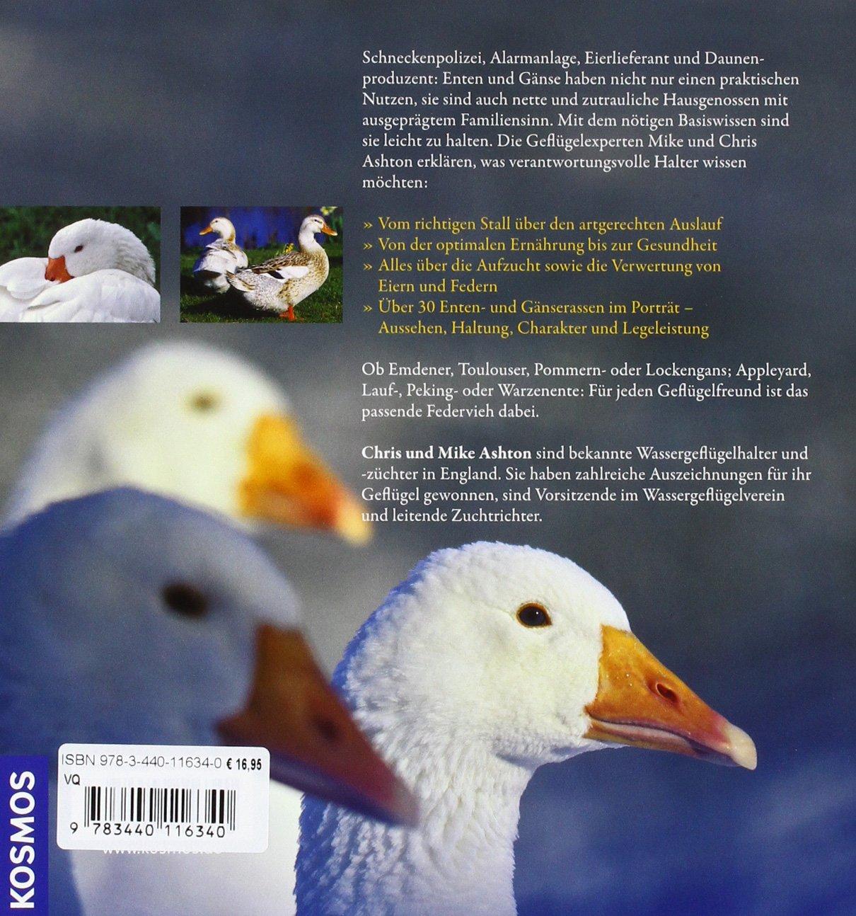 online store 7d23f 96785 Enten und Gänse: artgerecht halten: Amazon.de: Chris Ashton ...