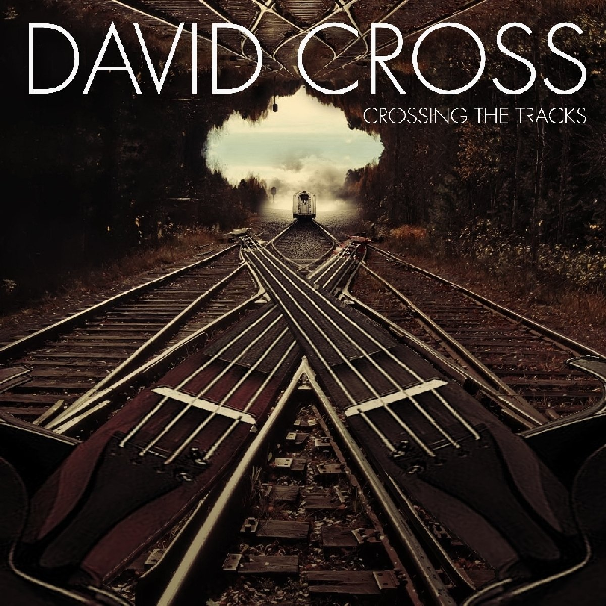 CD : David Cross - Crossing The Tracks (CD)
