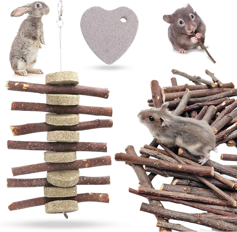 Hilitchi Guinea Pig Small Pets Toys Set Molar Natural Wooden Pine Dumbells Exercise Bell Roller Apple Sticks Pet Chew ToysFun Pet Balls for Chinchilla Hamster Rat Birds Bunny Rabbits Gerbils