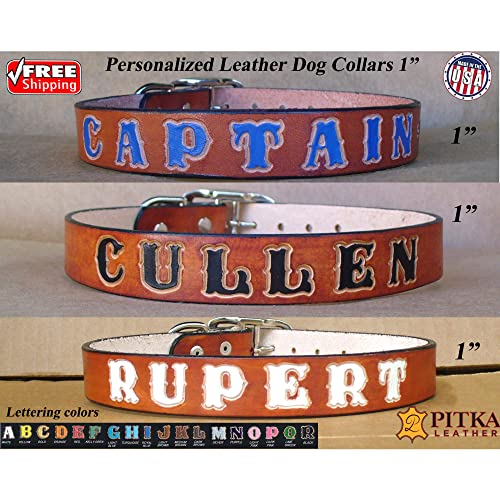 2 Wide Custom Leather Dog Collar Mastiff Collar-Leash Set Personalized Made in USA by Pitka Leather