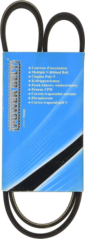 251015 MAPCO V-Ribbed Belts