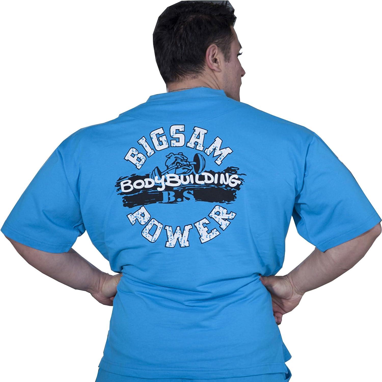 BIG SAM SPORTSWEAR COMPANY Bodybuilding Mens Ragtop Rag Top Sweater Gym T-Shirt 3119
