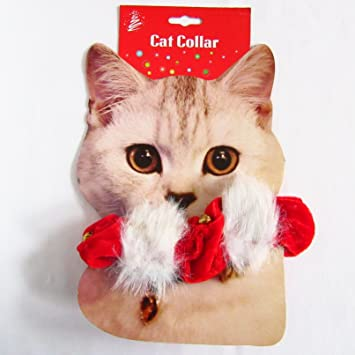 christmas cat kitten collar jingle bells red with white fur