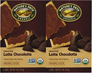 Nature's Path Organic Frosted Toaster Pastries Lotta Chocolotta - 6 Bars