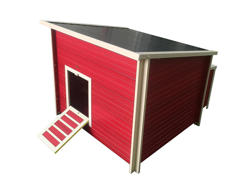 Best Chicken Coop 2019 (list of chicken coops that doesn't suck)