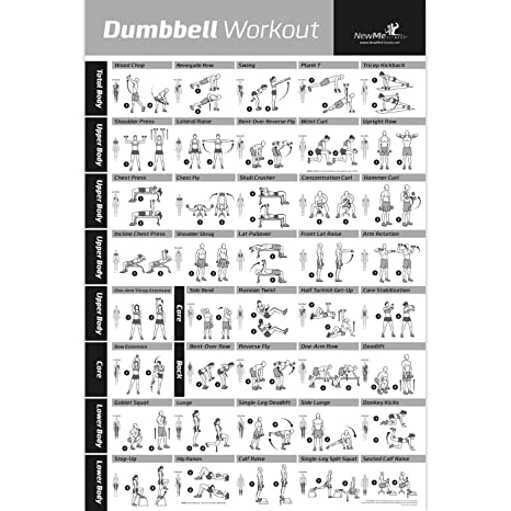 AmazonCom  Dumbbell Exercise Poster Laminated  Workout Strength