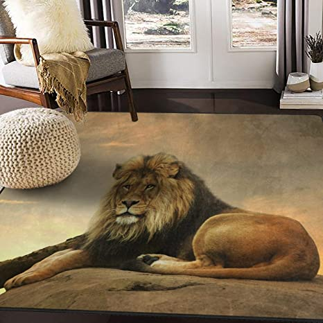 Amazon Com Alaza African Lion Area Rug Rugs For Living Room Bedroom 7 X 5 Home Kitchen