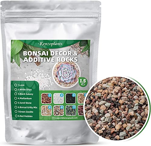 Kenzoplants Succulent and Cactus Bonsai Gritty Mix Rocks
