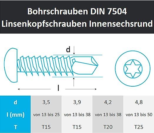 200 St/ück Bohrschrauben 3,9x13 mm Edelstahl A2 mit Linsenkopf selbstschneidend DIN 7504 M TX 15