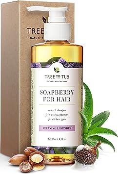 Organic Argan Oil Shampoo for Dry Hair
