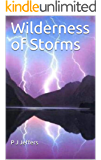 Wilderness of Storms