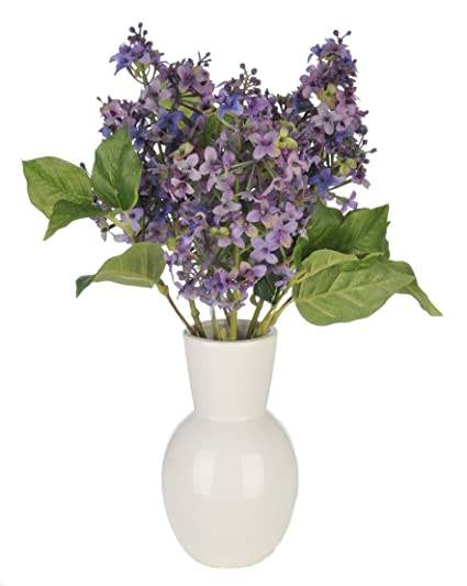 Amazon house of silk flowers artificial purple lilac in white house of silk flowers artificial purple lilac in white ceramic vase mightylinksfo